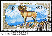 Argali, Ovis ammon, postage stamp, Mongolia, 1987. (2013 год). Редакционное фото, фотограф Ivan Vdovin / age Fotostock / Фотобанк Лори