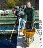 Купить «Male with female catching sturgeons in open fish tank», фото № 32059339, снято 19 марта 2019 г. (c) Яков Филимонов / Фотобанк Лори