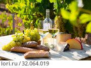 Купить «Wine, baguette, cheese against vineyard landscape», фото № 32064019, снято 17 октября 2019 г. (c) Яков Филимонов / Фотобанк Лори