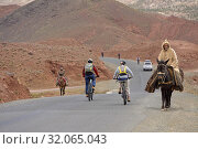 Encounter between an old man riding a mule and cyclists with mountain pedelec on the road connecting Tizi n'Tichka pass to Telouet village, Ouarzazate... (2019 год). Редакционное фото, фотограф Christian Goupi / age Fotostock / Фотобанк Лори