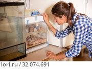 Woman controlling eggs in hatching machine. Стоковое фото, фотограф Яков Филимонов / Фотобанк Лори