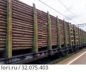 Купить «Железнодорожная платформа, груженая бревнами», фото № 32075403, снято 7 июня 2018 г. (c) Вячеслав Палес / Фотобанк Лори