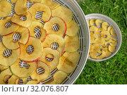 Купить «Дольки яблок на поддоне сушилки», фото № 32076807, снято 19 августа 2019 г. (c) Александр Романов / Фотобанк Лори
