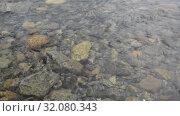 Таежная река на восточном склоне Полярного Урала. Стоковое видео, видеограф Сергей Дрозд / Фотобанк Лори