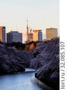Japan, Honshu, Tokyo, Kudanshita, Chidori-ga-fuchi, Imperial Palace Moat and City Skyline. Стоковое фото, фотограф Steve Vidler / age Fotostock / Фотобанк Лори