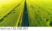 Купить «Aerial view on young boy, that rides a bicycle thru a wheat grass field on the old rural road. Sunlight and beams.», видеоролик № 32109351, снято 18 мая 2019 г. (c) Александр Маркин / Фотобанк Лори