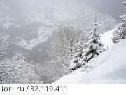 Heavy snow in the mountains. Стоковое фото, фотограф Юлия Бабкина / Фотобанк Лори