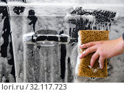 Купить «car door with foam and a hand with a foam sponge», фото № 32117723, снято 2 сентября 2019 г. (c) Дмитрий Бачтуб / Фотобанк Лори