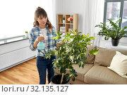 Купить «asian woman spraying houseplants at home», фото № 32135127, снято 13 апреля 2019 г. (c) Syda Productions / Фотобанк Лори