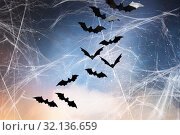 Купить «black bats over starry night sky and spiderweb», фото № 32136659, снято 6 июля 2017 г. (c) Syda Productions / Фотобанк Лори