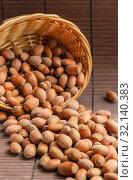 Купить «Hazelnut fruits. Healthy diet vegetarian food. Filbert natural healthy hazel sprinkled from a basket on a brown background. Crop Production, Nut Harvesting Season», фото № 32140383, снято 1 сентября 2019 г. (c) Светлана Евграфова / Фотобанк Лори