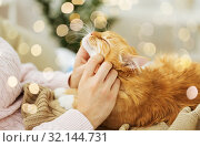 Купить «close up of owner stroking red cat in bed at home», фото № 32144731, снято 15 ноября 2017 г. (c) Syda Productions / Фотобанк Лори