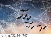Купить «black bats over starry night sky and spiderweb», фото № 32144747, снято 6 июля 2017 г. (c) Syda Productions / Фотобанк Лори