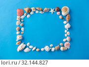Купить «frame of different sea shells on blue background», фото № 32144827, снято 20 ноября 2018 г. (c) Syda Productions / Фотобанк Лори