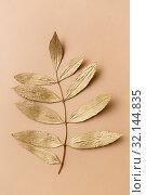 Купить «golden ash tree leaf on beige background», фото № 32144835, снято 20 ноября 2018 г. (c) Syda Productions / Фотобанк Лори