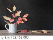 Купить «autumn leaves in jug on wooden table on dark background», фото № 32152083, снято 25 июля 2019 г. (c) Майя Крученкова / Фотобанк Лори