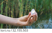 Female hand holding a amethyst crystal yoni egg on river background. Women's health, unity with nature concepts. Стоковое видео, видеограф Ольга Балынская / Фотобанк Лори