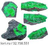 Купить «Collection of various crystaline uvarovite mineral stones isolated on white background», фото № 32158551, снято 10 июля 2020 г. (c) easy Fotostock / Фотобанк Лори
