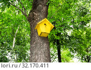Купить «Wooden birdhouse affixed to a tree trunk», фото № 32170411, снято 7 августа 2017 г. (c) FotograFF / Фотобанк Лори