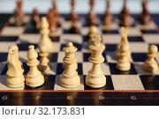 Купить «Debut in a chess game with a shallow depth of field», фото № 32173831, снято 7 сентября 2019 г. (c) Григорий Писоцкий / Фотобанк Лори