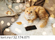 Купить «red cat lying on sofa with smartphone at home», фото № 32174071, снято 15 ноября 2017 г. (c) Syda Productions / Фотобанк Лори