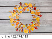 Купить «round frame of different dry fallen autumn leaves», фото № 32174115, снято 25 октября 2018 г. (c) Syda Productions / Фотобанк Лори