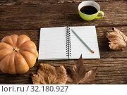 Купить «Autumn flat lay with pumpkins», фото № 32180927, снято 13 августа 2019 г. (c) Wavebreak Media / Фотобанк Лори