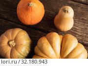 Купить «Autumn flat lay with pumpkins», фото № 32180943, снято 13 августа 2019 г. (c) Wavebreak Media / Фотобанк Лори