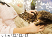 Купить «close up of owner with tabby cat in bed at home», фото № 32182483, снято 15 ноября 2017 г. (c) Syda Productions / Фотобанк Лори