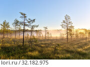 Купить «Fog over a small forest lake and swamp», фото № 32182975, снято 19 августа 2015 г. (c) Argument / Фотобанк Лори