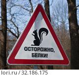 """Купить «Road sign """"BEWARE of SQUIRRELS""""», фото № 32186175, снято 18 марта 2016 г. (c) Олег Елагин / Фотобанк Лори"""