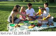 Купить «Parents with two teenagers enjoying delicious meal on the picnic», видеоролик № 32205639, снято 12 июля 2019 г. (c) Яков Филимонов / Фотобанк Лори
