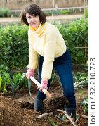 Купить «Woman digging soil in garden», фото № 32210723, снято 18 октября 2019 г. (c) Яков Филимонов / Фотобанк Лори