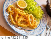 Купить «Fried squids in a batter of tempera flour served with salad», фото № 32211135, снято 23 октября 2019 г. (c) Яков Филимонов / Фотобанк Лори