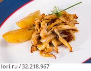 Купить «Cooked fried honey fungus mushrooms with baby-potatoes», фото № 32218967, снято 13 октября 2019 г. (c) Яков Филимонов / Фотобанк Лори