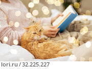 Купить «red cat and female owner reading book at home», фото № 32225227, снято 15 ноября 2017 г. (c) Syda Productions / Фотобанк Лори