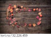 Купить «autumn leaves on darrk old wooden background», фото № 32226459, снято 25 сентября 2019 г. (c) Майя Крученкова / Фотобанк Лори