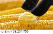 Купить «corn with melting butter roasting on grill», видеоролик № 32234755, снято 20 сентября 2019 г. (c) Syda Productions / Фотобанк Лори