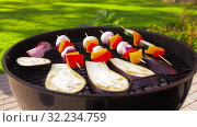 Купить «vegetables and mushrooms roasting on brazier grill», видеоролик № 32234759, снято 20 сентября 2019 г. (c) Syda Productions / Фотобанк Лори