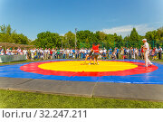 Купить «Russia, Samara, May 28, 2016: fight kuresh at Sabantuy in the city park. This struggle on the canvas, thrown at the enemy's belt, an important element of the national holiday among peoples.», фото № 32247211, снято 28 мая 2016 г. (c) Акиньшин Владимир / Фотобанк Лори