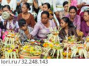 Купить «Bali, Indonesia - Feb 2, 2012 - Hari Raya Galungan and Umanis Galungan holiday fesival parade - the days to celebrate the victory of Goodness over evil, on February 2nd 2012 on Bali, Indonesia», фото № 32248143, снято 2 февраля 2012 г. (c) Matej Kastelic / Фотобанк Лори
