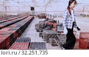 Chinese woman gardener working in greenhouse. Стоковое видео, видеограф Яков Филимонов / Фотобанк Лори