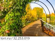 Купить «Городской парк», фото № 32253019, снято 3 октября 2019 г. (c) Кристина Викулова / Фотобанк Лори