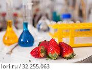 Купить «Strawberry with lab test tubes», фото № 32255063, снято 24 января 2019 г. (c) Яков Филимонов / Фотобанк Лори