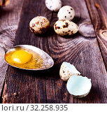 Купить «Raw quail egg in an iron spoon, next to a broken shell from an egg on a gray wooden background.», фото № 32258935, снято 30 апреля 2017 г. (c) easy Fotostock / Фотобанк Лори