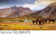 Andes near Las Lenas. Стоковое фото, фотограф Яков Филимонов / Фотобанк Лори
