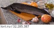 Купить «Sturgeon fish on stone surface with pomegranates», фото № 32285387, снято 5 февраля 2018 г. (c) Яков Филимонов / Фотобанк Лори