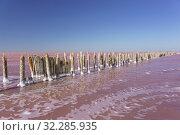 Красивое розовое озеро Сасык-Сиваш в западной части Крымского полуострова (2019 год). Стоковое фото, фотограф Наталья Гармашева / Фотобанк Лори