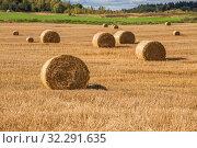 Купить «Autumn rural landscape», фото № 32291635, снято 23 сентября 2019 г. (c) Юлия Бабкина / Фотобанк Лори