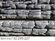 Купить «Background of charred logs», фото № 32295227, снято 23 сентября 2019 г. (c) Юлия Бабкина / Фотобанк Лори
